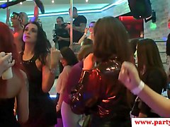 Euro party babes fuck strippers at party